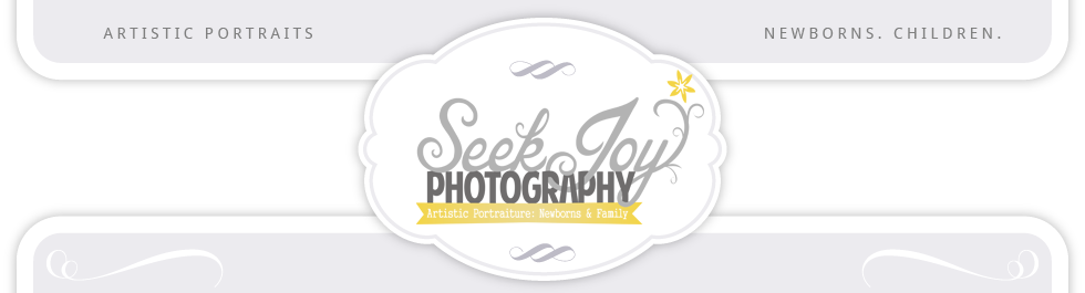 Seek Joy Photography logo