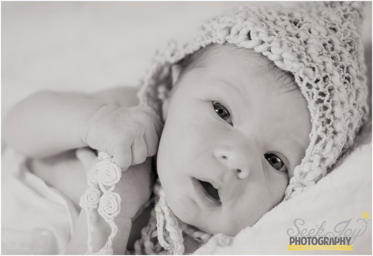 newborn photographer anderson sc