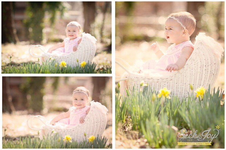 greenville baby photography